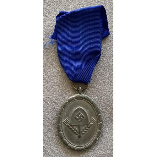 RAD 12 Year Medal