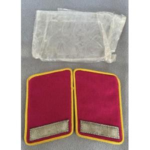 Reichsleitung Mitarbeiter Collar Tabs # 7885