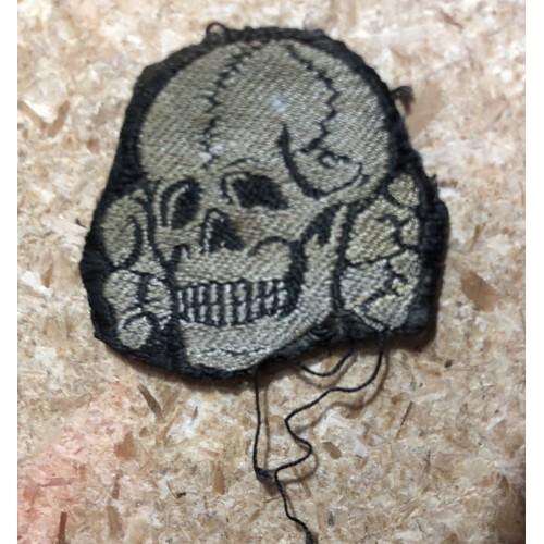 SS Bevo Skull # 5091