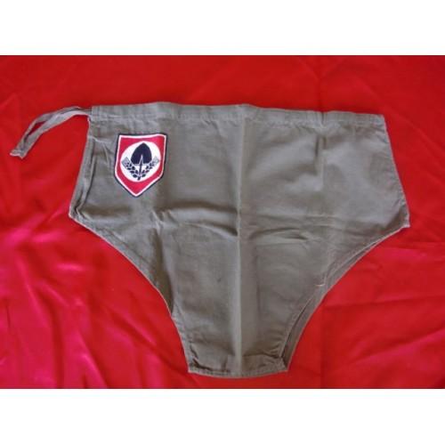 RAD Shorts # 2563